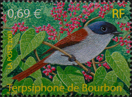 A la découverte de la diversité des oiseaux
